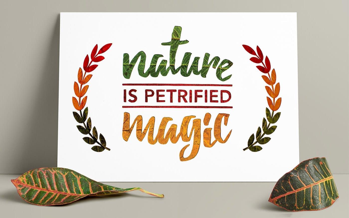 Petrified Magic